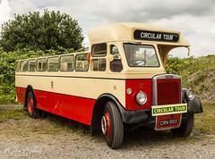 Open Top No 12 (milan_146) Tags: crn933 leylandtiger leylandtigerps25 ps25 ribble bus classic classicbus opentop ribblemotorservices southportcorporationtransport merseysidetransporttrust mtt burscough nikon d7100