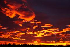 Dawn Dazzle (Let Ideas Compete) Tags: dawn morning sunrise