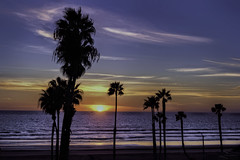 O'Side Beach Sunset 01-12-11-19-60D (rod1691) Tags: california united states nature beauty usa tropical paradise sunrise palm trees outdoor landscape seascape walkabout sunset photography travel beach sand sun pier strand canon40506070d5dii walknshoot