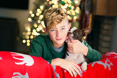 (Rebecca812) Tags: boy dog christmas christmastree christmaslights bostonterrier puppy love friendship red green happiness celebration blondhair blueeyes boyhood canon portrait people