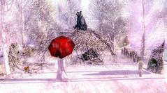 Second Life 05.11.19 (Angelo Diabolico) Tags: snow bear dimis scene aap frozen pose backdrop happy winter squirrel umbrella prop