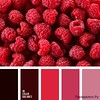 Сочетание красного цвета 1