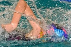 DSC_8446.jpg (dirk.hofmann) Tags: rotweisslörrach dirkhofmann swimming schwimmen swimmeet swim competition 2019 loerrach wettkampf