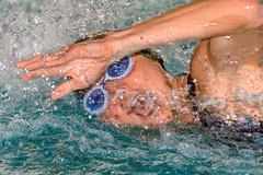 DSC_8455.jpg (dirk.hofmann) Tags: rotweisslörrach dirkhofmann swimming schwimmen swimmeet swim competition 2019 loerrach wettkampf