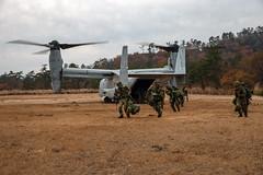 "U.S. Marines and Soldiers with 8th Infantry Regiment, JGSDF, conduct an insert via MV-22B Ospreys (#PACOM) Tags: shiga japan 3rdmarinedivision 3dmardiv commstrat usmc readiness pacific udp 25thregiment 1stbattalion jgsdf 4thregiment 4threg forestlight forestlightmiddlearmy marineforcesreserve 8thinfantryregiment bilateralexercise mv22b osprey marinemediumtiltrotorsquadron262 1stmaw 1stmarineaircraftwing insertdrill uh1jhuey usindopacificcommand ""usindopacomaibano training area"
