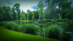 Diana's Island at Althorp Estate (Bobinstow2010) Tags: green lake diana restingplace althorp island estate grass rushes water princess nn74hq northampton woodlands grave arty topaz photoshop