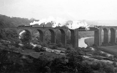 syks - 61166 rcts special conisbrough viaduct 11-3-1952 copyright unknown (johnmightycat1) Tags: railway yorkshire dearnevalleyrailway railtour b1