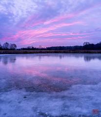 Overcast Color (Mitymous) Tags: dawn doorcreekpark ice neighborhood overcast pons reflections sunrsise vertorama walk winter201920 wisconsin