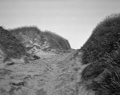 The stairs (Rosenthal Photography) Tags: dänemark ff120 epsonv800 mittelformat urlaub ilfordhp5 mamiya7 ilfordlc2912921°c12min ilfordrapidfixer 20190804 asa400 analog 6x7 strairs landscape denmark summer august houvig dunes sea northsea grass sand beach coast strand mamiya 150mm f45 ilford lc29 rapid fixer epson v800