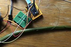 Teensy / Capacitive Touch / Distance Sensors (WILLPOWER STUDIOS) Tags: teensy diy plant leaf electronics musictech pliers ultrasonicsensors 2019 ping distancesensors
