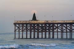 December Halo's (ihikesandiego) Tags: full moon moonset sunrise pacific beach crystal pier san diego