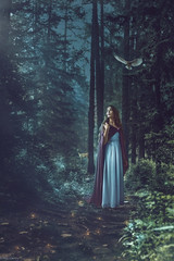 The Moonlit Forest (Felicia Brenning) Tags: moonlit moonlight forest woods nature conceptual conceptualphotography conceptualportrait conceptualportraiture fairytalephotography fairytale fantasy fantasyphotography fantasyportrait surreal surrealism surrealphotography surreality photomanipulation manipulation photographyart photoshop art artsy inspiration imagination imaginative dream dreamy fineart fineartphotography selfie selfportrait selfportraiture nikon nikond5600 nikonphotography feliciabrenning flickr unsplash