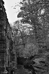 Abbey Fall (Spotmatix) Tags: 1685mm abbey belgium brabantwallon camera cults effects fall k5iis landscape lens monochrome pentax places seasons villerslaville zoomstd