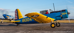 DSC_8040 (dwhart24) Tags: racing race car historic sportscar speedway sebring florida fl track nikon david hart motor