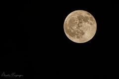 full moon - 12.12.2019 (MaFr photopixels.de) Tags: moon sky fullmoon