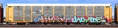 Hiway/Wyse (quiet-silence) Tags: graffiti graff freight fr8 train railroad railcar art autorack hiway wyse mayhem d30 dirty30 ns norfolksouthern ettx802824