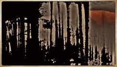 Last glance (pastadimama) Tags: abstractlandscape illusion abstractart marcoabstract macro art nature sunset forest abstract lastglance