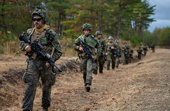 """U.S. Marines conduct a patrol during part of a comprehensive force on force event at Forest Light Middle Army (#PACOM) Tags: shiga japan 3rdmarinedivision 3dmardiv commstrat usmc readiness pacific udp 25thregiment 1stbattalion jgsdf 4thregiment 4threg forestlight forestlightmiddlearmy marineforcesreserve 8thinfantryregiment bilateralexercise attack patrol defense usindopacificcommand """"usindopacomaibano training area"""