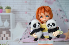 Hug me please :) (Fenekdolls) Tags: bjd doll fairyland ante panda toy