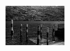 Poles (Italian Film Photography) Tags: poles water quiet lake landscape waves boat blackandwhite bw bn film analogue pellicola argentique 6x9 molo harbor acqua lago paesaggio blackwhite bianco e nero biancoenero 120 moskva 5 vintage rollei rpx 25 rpx25