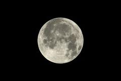Volle maan (marcobenschop) Tags: moon maan full volle nikon d7100 astro 70200mm