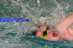 DSC_8437.jpg (dirk.hofmann) Tags: rotweisslörrach dirkhofmann swimming schwimmen swimmeet swim competition 2019 loerrach wettkampf