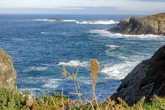 A la vuelta salió el sol (Micheo) Tags: spain senderodelacosta sendacosteranaviega asturias ngc marcantabrico costa shore coast northernspain puenteenasturias landscape paisaje sol sunshine