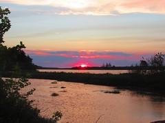 SteveGurney_Sunrise_June2018 (CabotShores) Tags: sunrise summer churchpond guestphoto