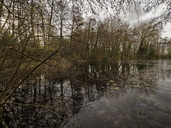 A Wintry Rooksbury (martin_swatton) Tags: rooksbury park lake wickham hampshire england uk winter icy water bleak cold tranquil peaceful olympus omd em1 mkii mzuiko 714 28 wideangle