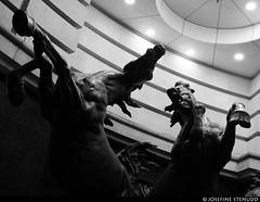 20190328_02 One of my fave statues - The Horses of Helios by Rudy Weller in London, England (ratexla (protected by Pixsy)) Tags: ratexlaslondontrip2019 28mar2019 2019 canonpowershotsx50hs london england uk theuk greatbritain britain unitedkingdom theunitedkingdom europe earth tellus photophotospicturepicturesimageimagesfotofotonbildbilder europaeuropean travel travelling traveling journey vacation holiday semester resaresor city urban storstadssemester ontheroad wanderlust horsesofhelios thehorsesofhelios statue statues sculpture sculptures staty statyer skulptur skulpturer horse horses stallion stallions hingst hingstar art konst culture bw blackandwhite blackwhite monochrome svartvitt svartvita svartvit beautiful cool cute favorite