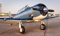 DSC_4977 (dwhart24) Tags: racing race car historic sportscar speedway sebring florida fl track nikon david hart motor