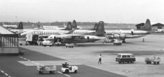 PK-RVP Vickers Viscount 832  Merpati Airlines,  PK-JFI (Sempati Air) Fokker F-27-600 , PK-MLF Lockheed L.188C Electra of Mandala Airlines CGK 131188 (kitmasterbloke) Tags: jakarta cgk sukarnohatta propliner indonesia 1988 airliner classic