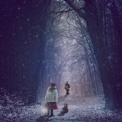 Santa at work (Ro Cafe) Tags: photomanipulation photoshop ps fantasy winter christmas santa girl teddy snow forest night magic moody