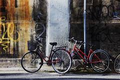 Tag/Bike Storage