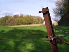 Autumn Walk (Spotmatix) Tags: 35mm belgium brabantwallon camera countryside evolte400 effects fall incourt landscape lens monochrome olympus places primes seasons