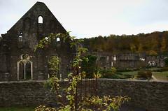 Abbey Fall (Spotmatix) Tags: 1685mm abbey belgium brabantwallon camera cults fall k5iis landscape lens pentax places seasons villerslaville zoomstd