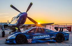 DSC_4930 (dwhart24) Tags: racing race car historic sportscar speedway sebring florida fl track nikon david hart motor