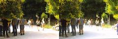 Jardin des Plantes stéréo plein format 12 (Dominik Lange) Tags: stereoscopy stereophotography stereoscopic stereography stereorig stereo3d jardindesplantes poetry parkcity paris publicspace nature underground urbannature urbanspace outdoor outside
