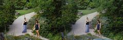Jardin des Plantes stéréo plein format 8 (Dominik Lange) Tags: stereoscopy stereophotography stereoscopic stereography stereorig stereo3d jardindesplantes poetry parkcity paris publicspace nature underground urbannature urbanspace outdoor outside