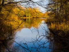 Alles was man liebt..... (mohnblume2013) Tags: see bäume landschaft herbst bunt grün laub gewässer wald