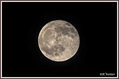 Pleine lune 191212-02-P (paul.vetter) Tags: lune pleine