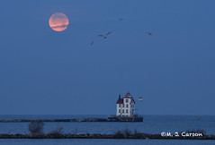 Setting Moon Over The Lighthouse (mjcarsonphoto) Tags: lorain lakesidelanding sunrise moonset lighthouse