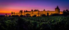 Carcassonne 19-103 (snellerphoto) Tags: aude carcassonne citédecarcassonne france occitan southwestfrance sunset unesco occitanie vineyard toulouse occitane