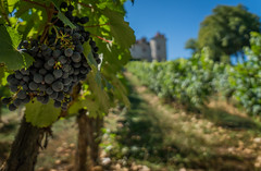 Cahors 19-110 (snellerphoto) Tags: cahors france lot occitan southwestfrance occitane occitanie toulouse