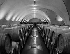 Cahors 19-109 (snellerphoto) Tags: barrels cahors cellar france lot malbec occitan southwestfrance wine occitane occitanie toulouse