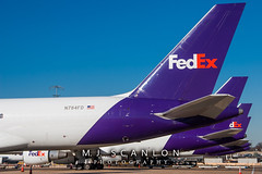 N784FD FedEx | Boeing 757-222(SF) | Memphis International Airport (M.J. Scanlon) Tags: 757 757200 757200f 757222sf absolutelypositivelyovernight air aircraft aircraftspotter aircraftspotting airliner airplane airport aviation boeing boeing757200 canon capture cargo digital eos fedex federalexpress flight fly flying freight freighter haul image impression jet jetliner landscape logistics mem memphis memphisinternationalairport mojo n571ua n784fd outdoor packages perspective photo photograph photographer photography picture plane planespotter planespotting scanlon spotter spotting tennessee theworldontime unitedairlines ©mjscanlon ©mjscanlonphotography