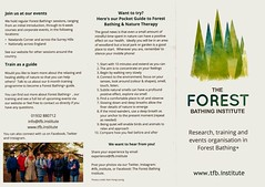 "The Forest Bathing Institute Information Leaflet (December 2019 Edition) (Page 1 of 2) (Kam Hong Leung 07) Tags: ""beatriceleung"" ""kamhongleung"" ""leungkamhong"" 'theforestbathinginstitute' tfbi 'forestbathing' 'garyevans' 'olgaterebenina' 'susannemeis' 'rosannaamadeo' tfbinstitute 'foresttherapy' 'holistichealingtherapy' 'shinrinyoku' 'nipponmedicalschool' 'drqingli' 'professorsuzannesimard' 'woodwideweb' 'newlandscorner' 'surreywildlifetrust' guildford surrey 'surreycountycouncil' 'yewtree' 'oaktree' fungi mushroom wood woodland tree flora fauna wildlife park parkland 'greenspace' conservation ecology environment nature plant 'naturalneighbourhood' network autumn 'surreyhills'"