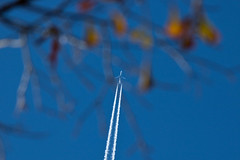 IMG_0008 Home for Christmas (oldimageshoppe) Tags: travel flying jet contrails bluesky latefall holidayseason