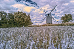 Almost ready for the miller (David Feuerhelm) Tags: infrared ir landscape wideangle building mill windmill postmill sails field wheat sky clouds sigma 1020mmf456 nikon d750