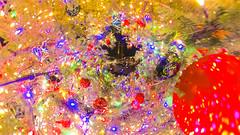LITTLE CHRISTMAS TREE (ajpscs) Tags: ©ajpscs ajpscs 2019 japan nippon 日本 japanese 東京 tokyo city people tokyostreetphotography streetphotography street urban urbanlife walksoflife tokyoscene insta360onex 360度カメラ 360°camera 360streetphotography lifein360 tokyo360 tinyplanet